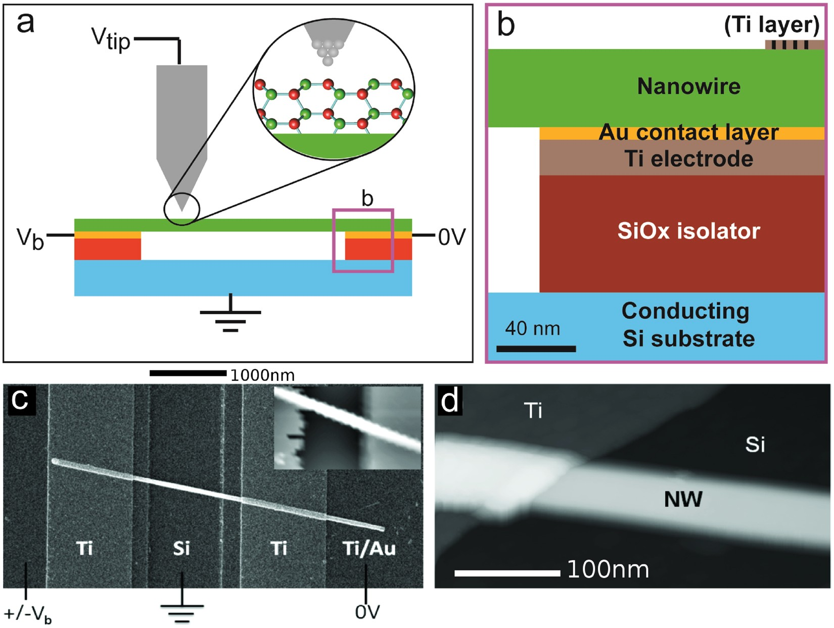 imaging atomic scale dynamics on iii–v nanowire surfaces during electrical  operation | scientific reports