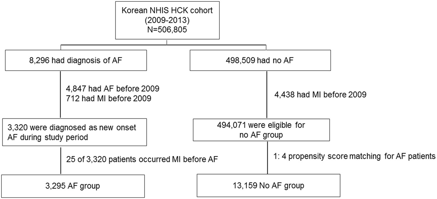 Atrial fibrillation and the risk of myocardial infarction: a nation