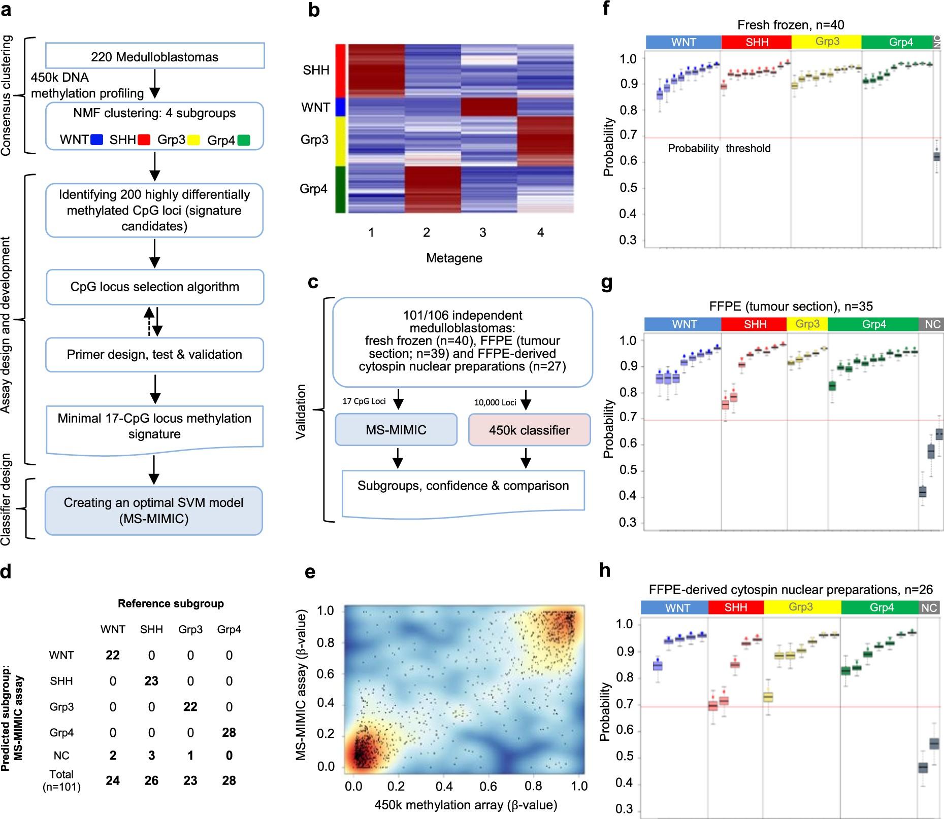 Minimal methylation classifier MIMIC A novel method for