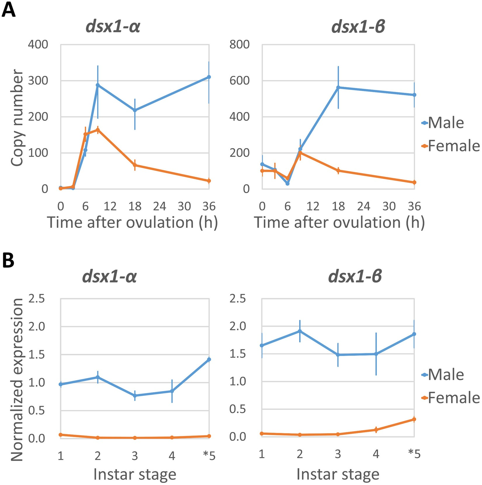 Mapping the expression of the sex determining factor Doublesex1 in ...