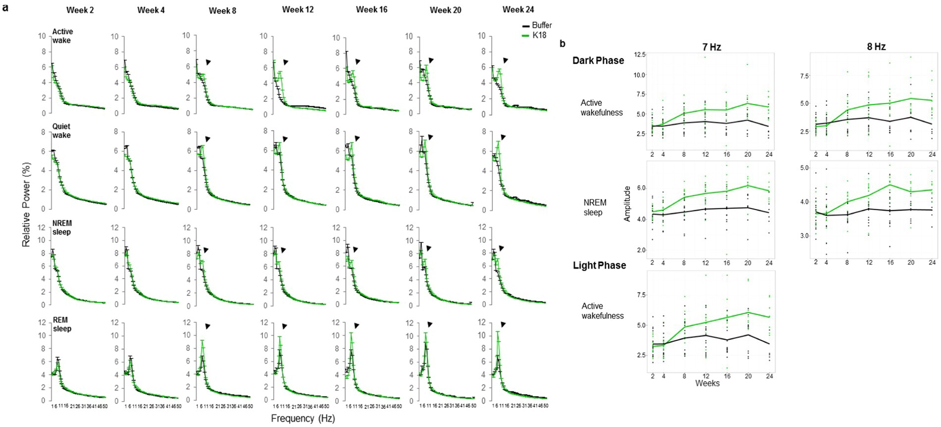 Emergence of early alterations in network oscillations and