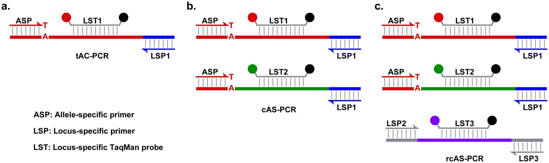 Improved detection of BRAF V600E using allele-specific PCR coupled