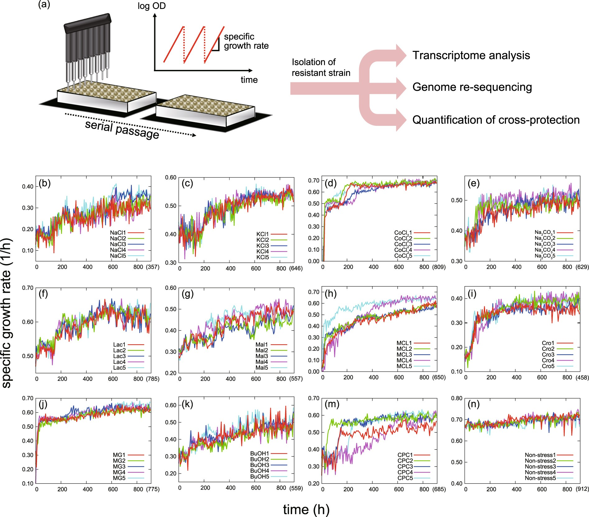 Prediction Of Cross Resistance And Collateral Sensitivity By Gene Measurement Electrical Quantities With A Cro Expression Profiles Genomic Mutations Scientific Reports