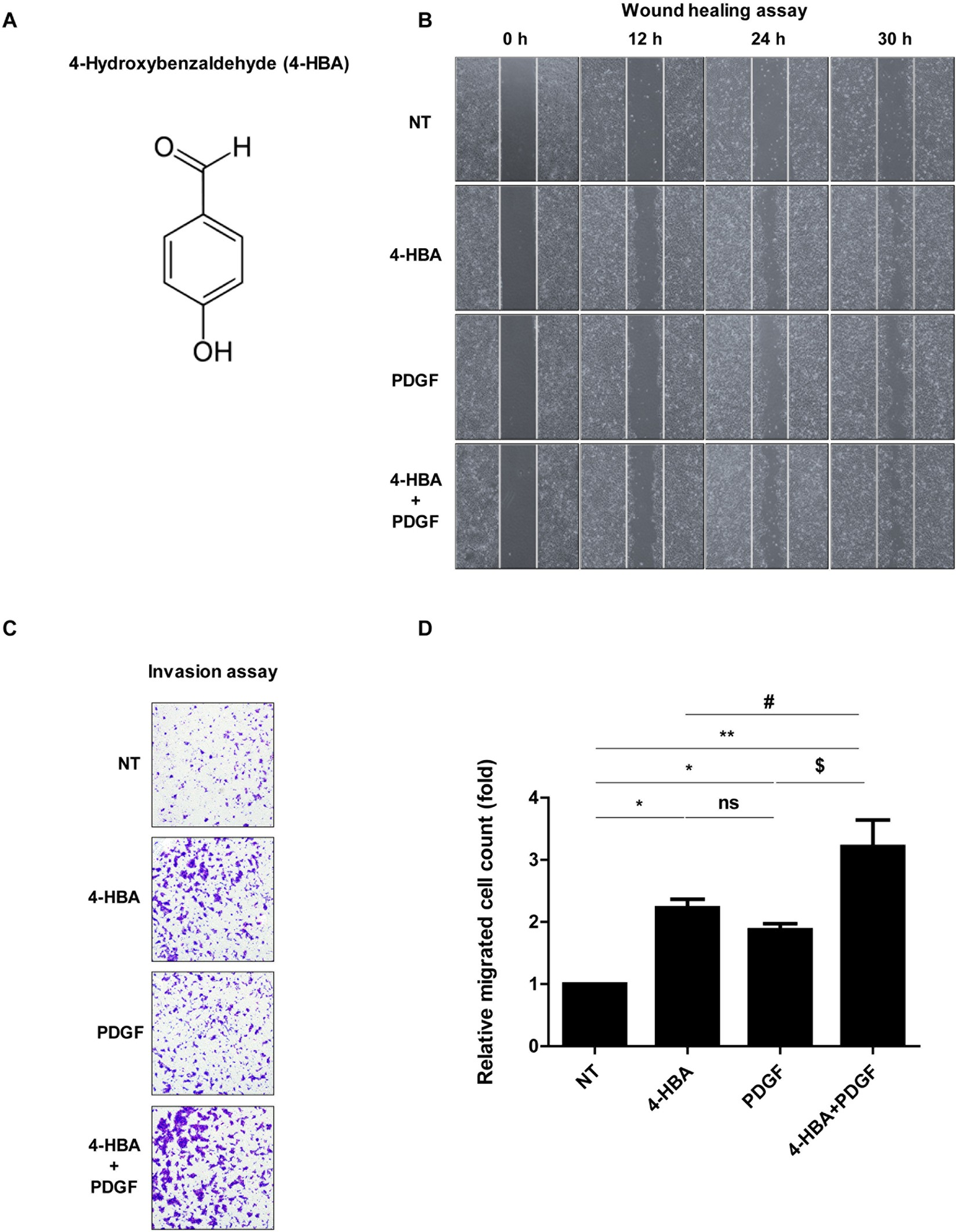 4-Hydroxybenzaldehyde accelerates acute wound healing