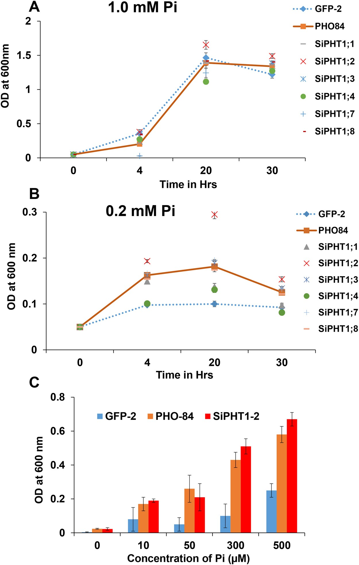 Functional characterization of the PHT1 family transporters of