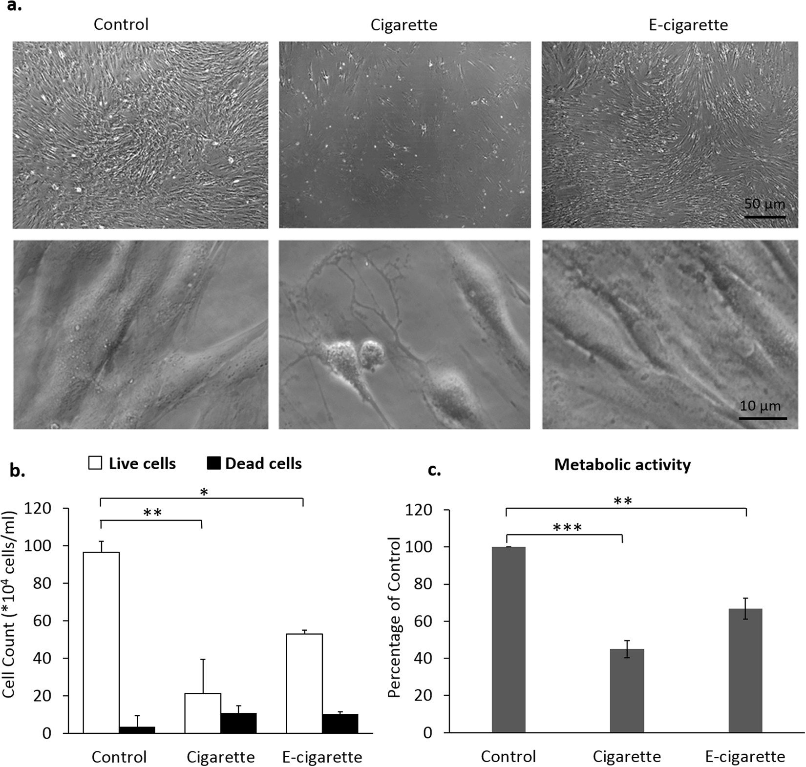 Electronic Cigarette Smoke Impairs Normal Mesenchymal Stem Cell