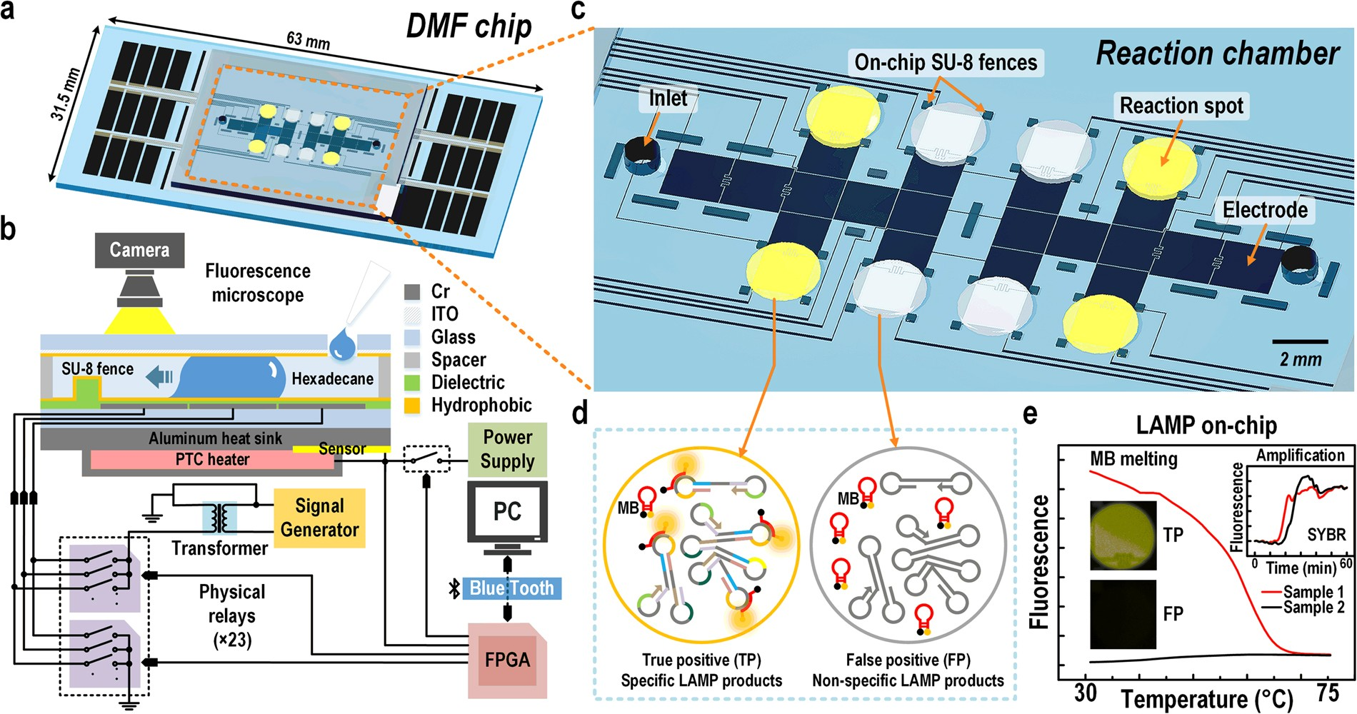 A digital microfluidic system for loop-mediated isothermal ...