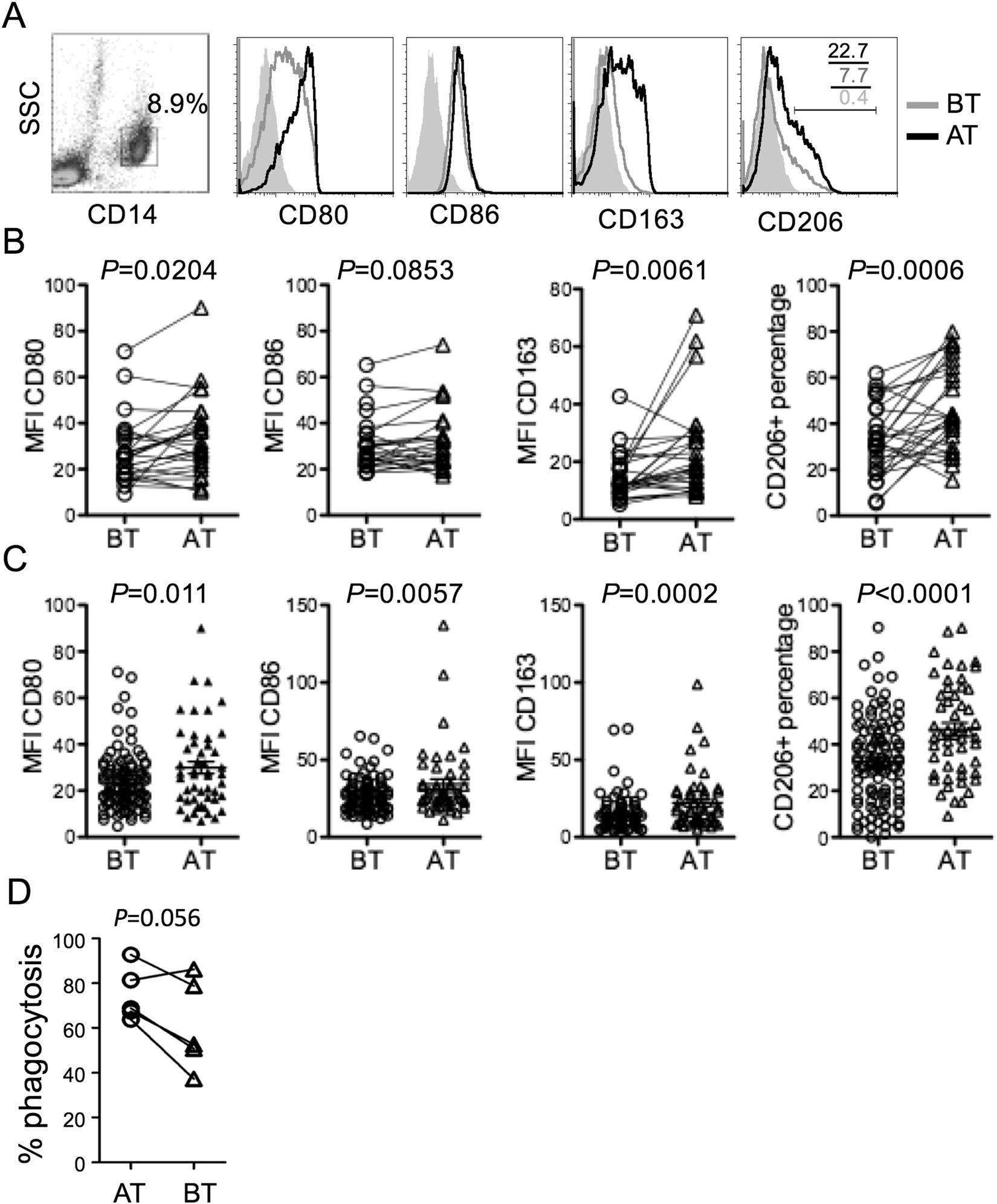 Antibiotics induce polarization of pleural macrophages to M2