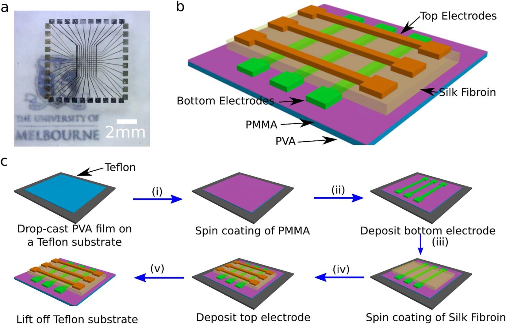 A Silk Fibroin Bio-Transient Solution Processable Memristor