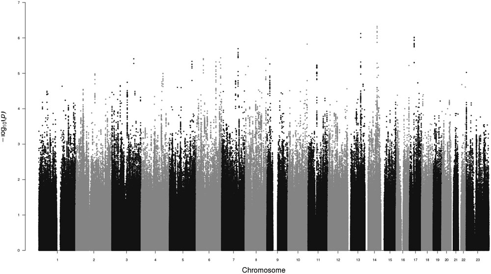 Genome-Wide Association Study of Male Sexual Orientation | Scientific Reports