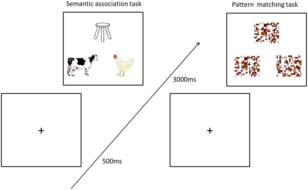 GABA Concentrations In The Anterior Temporal Lobe Predict Human Semantic Processing