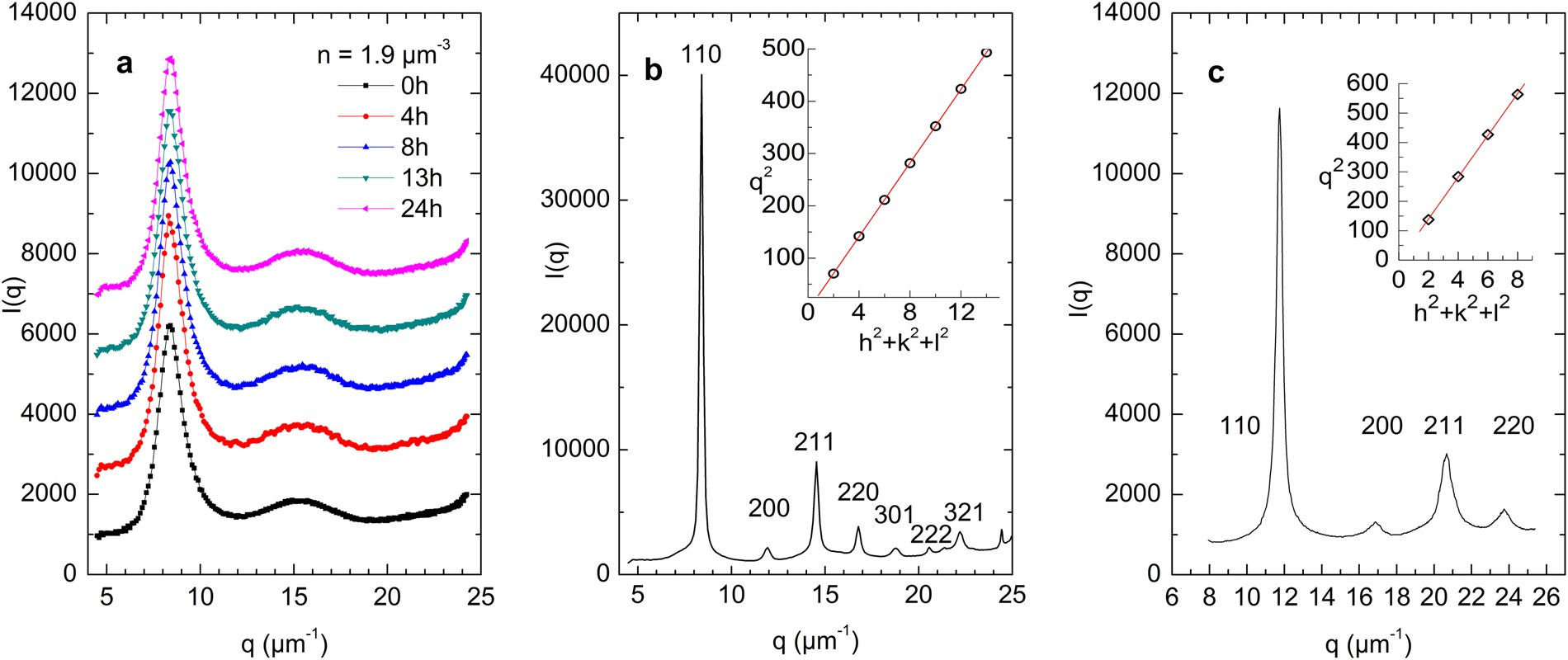 Formation of a transient amorphous solid in low density