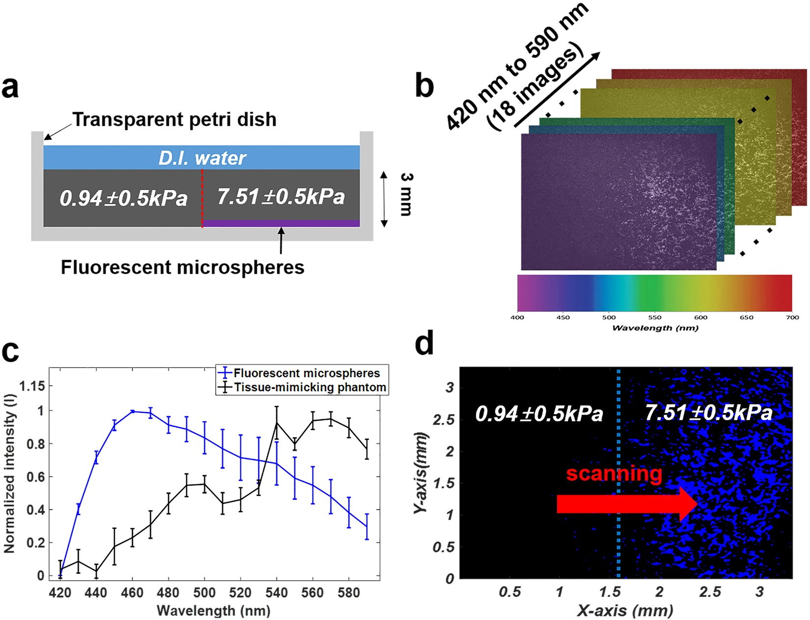 A Multimodal Biomicroscopic System Based On High Frequency Acoustic Ultrasonic Transmitter And Receiver Electronic Party Gear Radiation Force Impulse Multispectral Imaging Techniques For Tumor Characterization