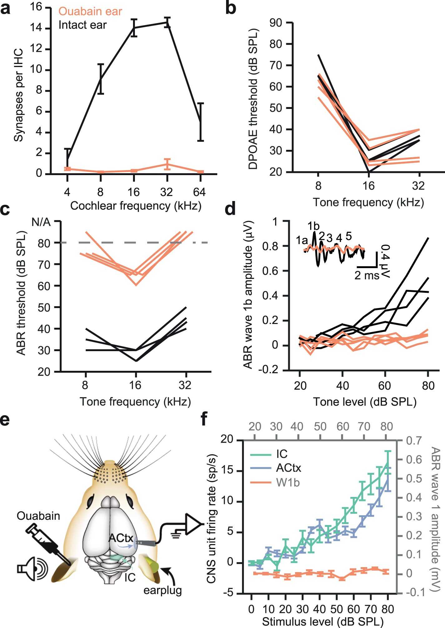 Pharmacological Modulation Of Kv31 Mitigates Auditory Midbrain Induction Cooker Circuit Signalprocessing Diagram Temporal Processing Deficits Following Nerve Damage Scientific Reports