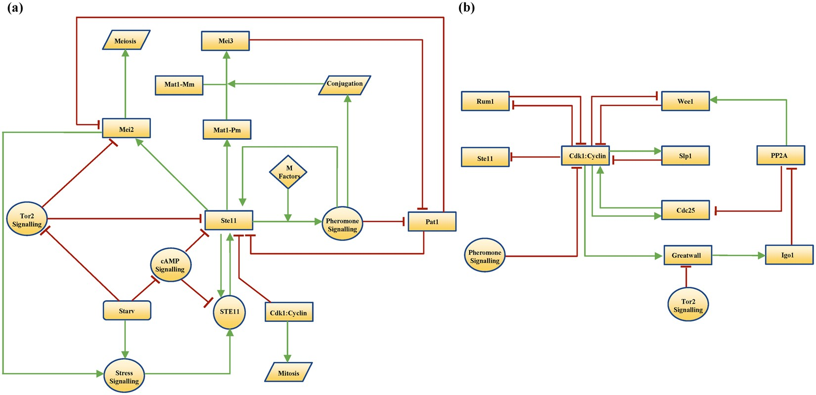 hs22 balboa circuit board wiring diagram wiring diagrams Hot Tub Circuit Board Wiring