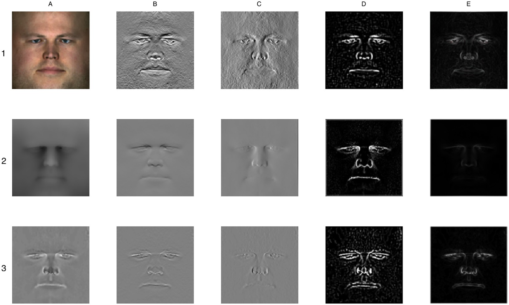 Ensemble landmarking of 3D facial surface scans | Scientific Reports