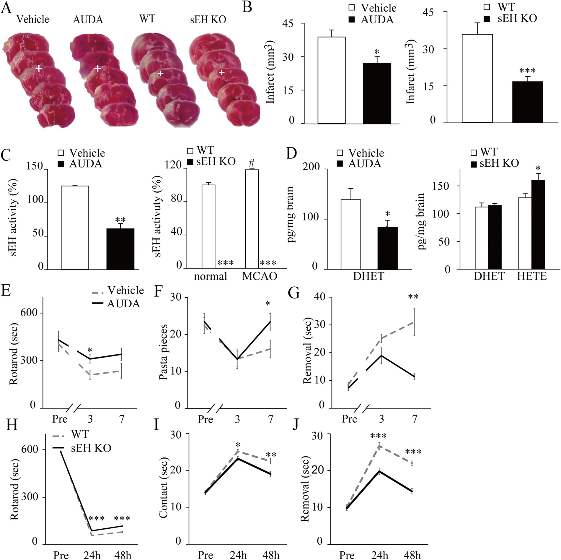 Blockade Of Soluble Epoxide Hydrolase Attenuates Post Ischemic 555 Timer Circuit Diagram Moreover Internal Neuronal Hyperexcitation And Confers Resilience Against Stroke With Trkb Activation