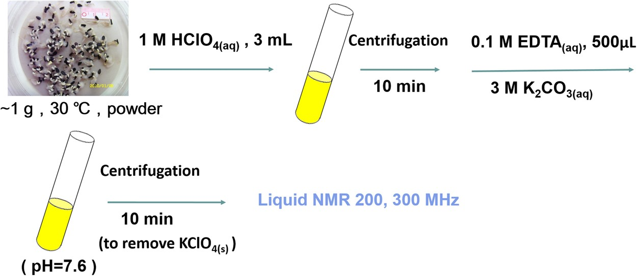 High Resolution 31 P NMR Spectroscopy Generates a Quantitative