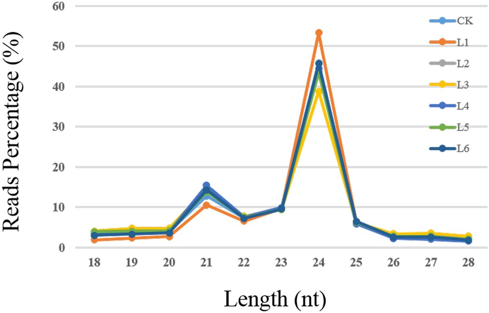 Comparative analysis of miRNA expression profiles in