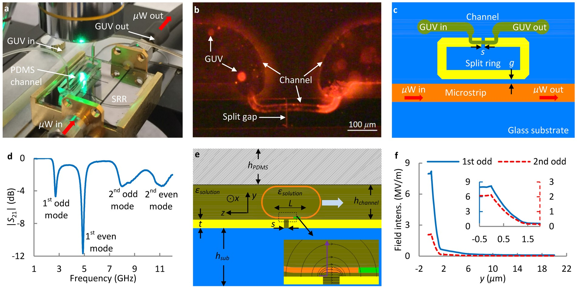 Microwave Measurement Of Giant Unilamellar Vesicles In Aqueous Little Wiring Diagram For Incubator Solution Scientific Reports