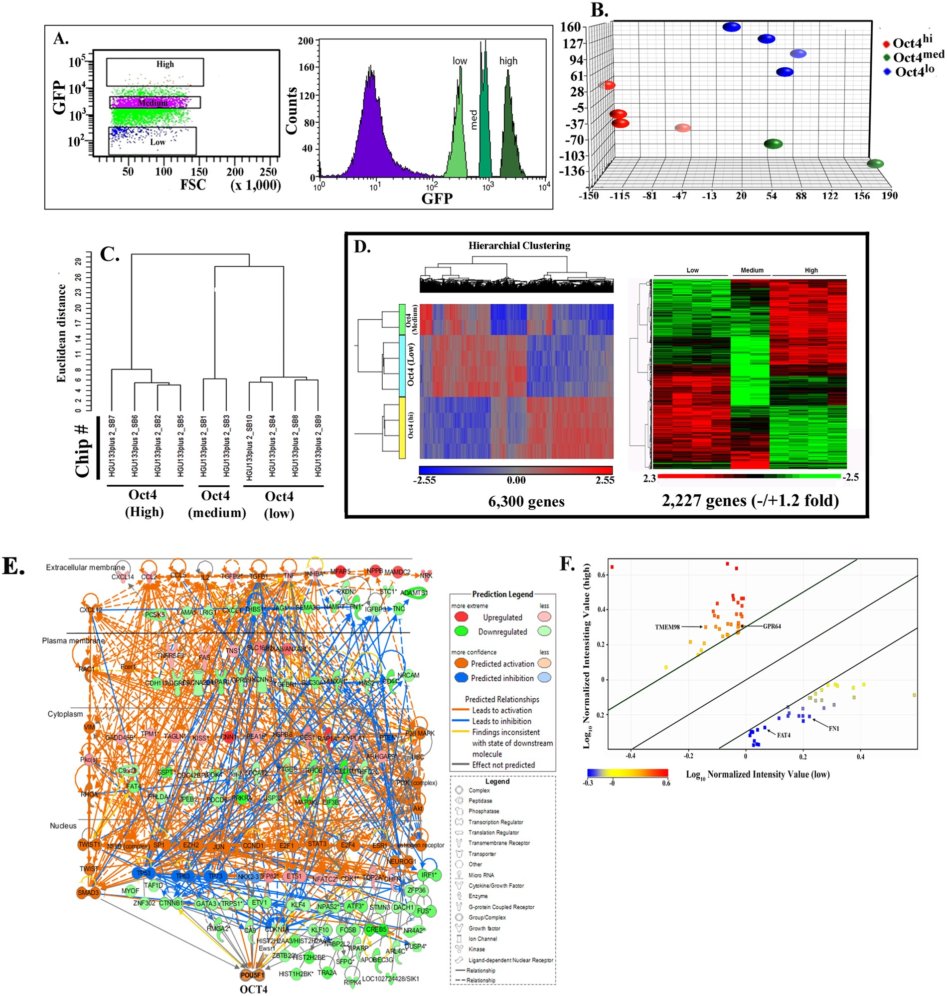 Evaluation Of A Developmental Hierarchy For Breast Cancer Cells To Mk 5894 Assess Risk Based Patient Selection Targeted Treatment Scientific Reports