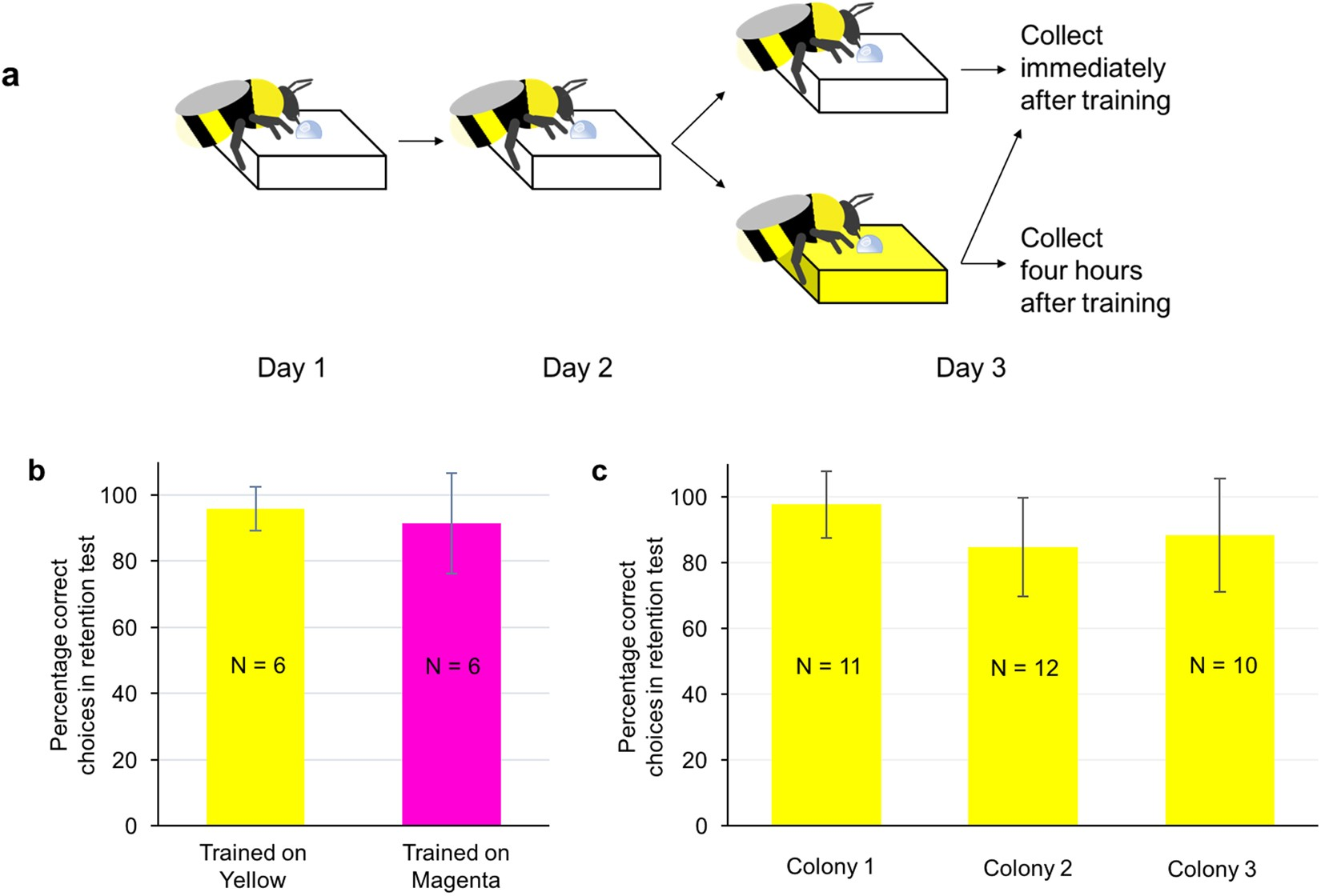 Large scale transcriptome changes in the process of long term large scale transcriptome changes in the process of long term visual memory formation in the bumblebee bombus terrestris scientific reports buycottarizona