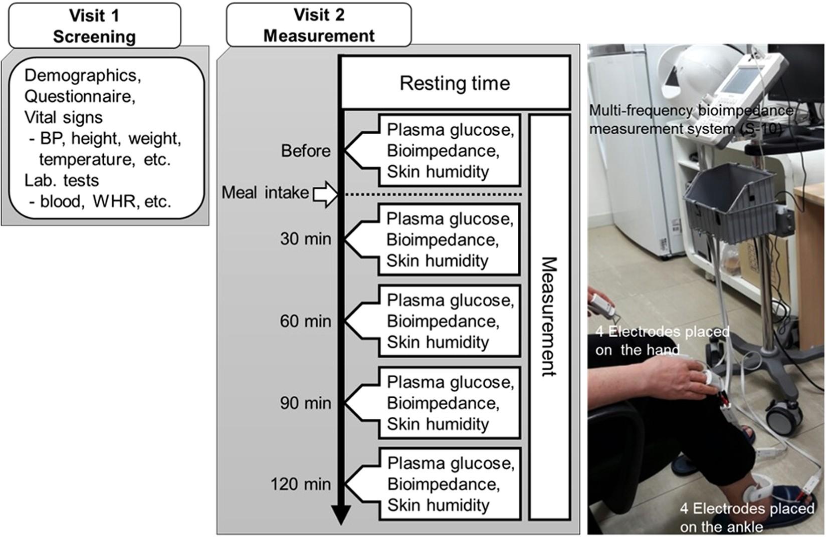 생체전기를 이용한 당뇨 측정방법 그림-논문발췌