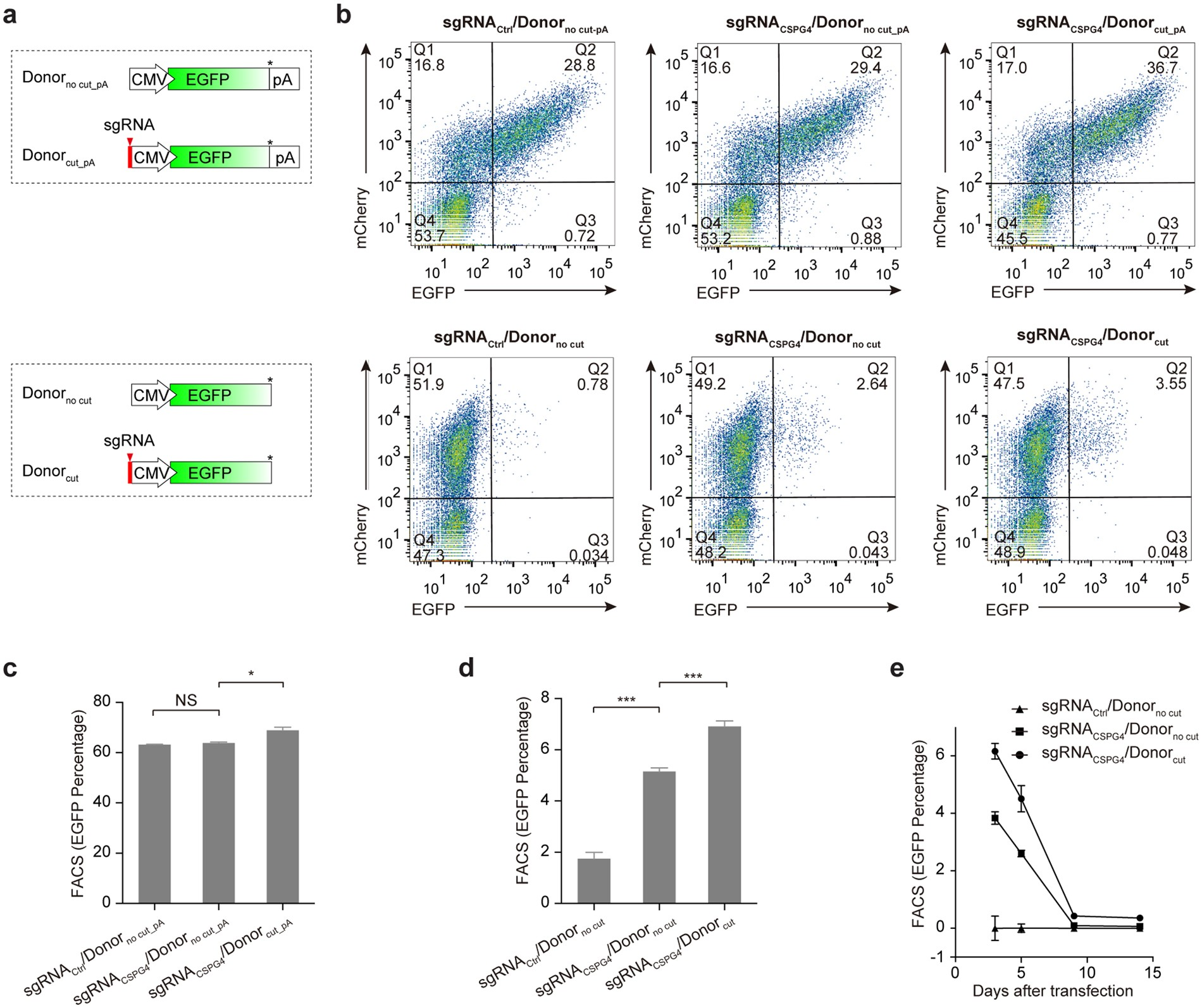 A Surrogate Reporter System For Multiplexable Evaluation Of Crispr Cut Phone Line Detector Circuit Cas9 In Targeted Mutagenesis Scientific Reports