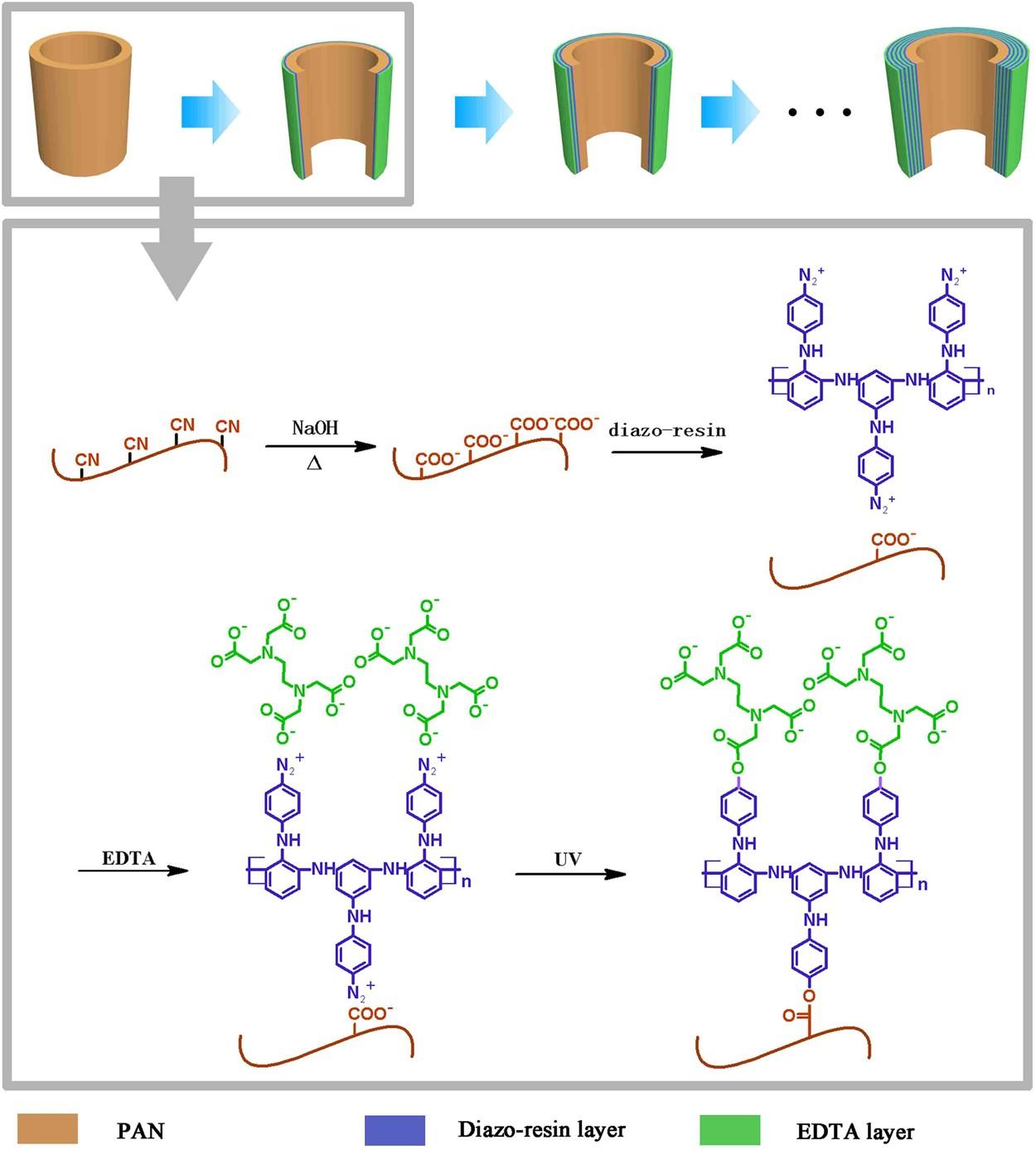Advanced Modified Polyacrylonitrile Membrane with Enhanced