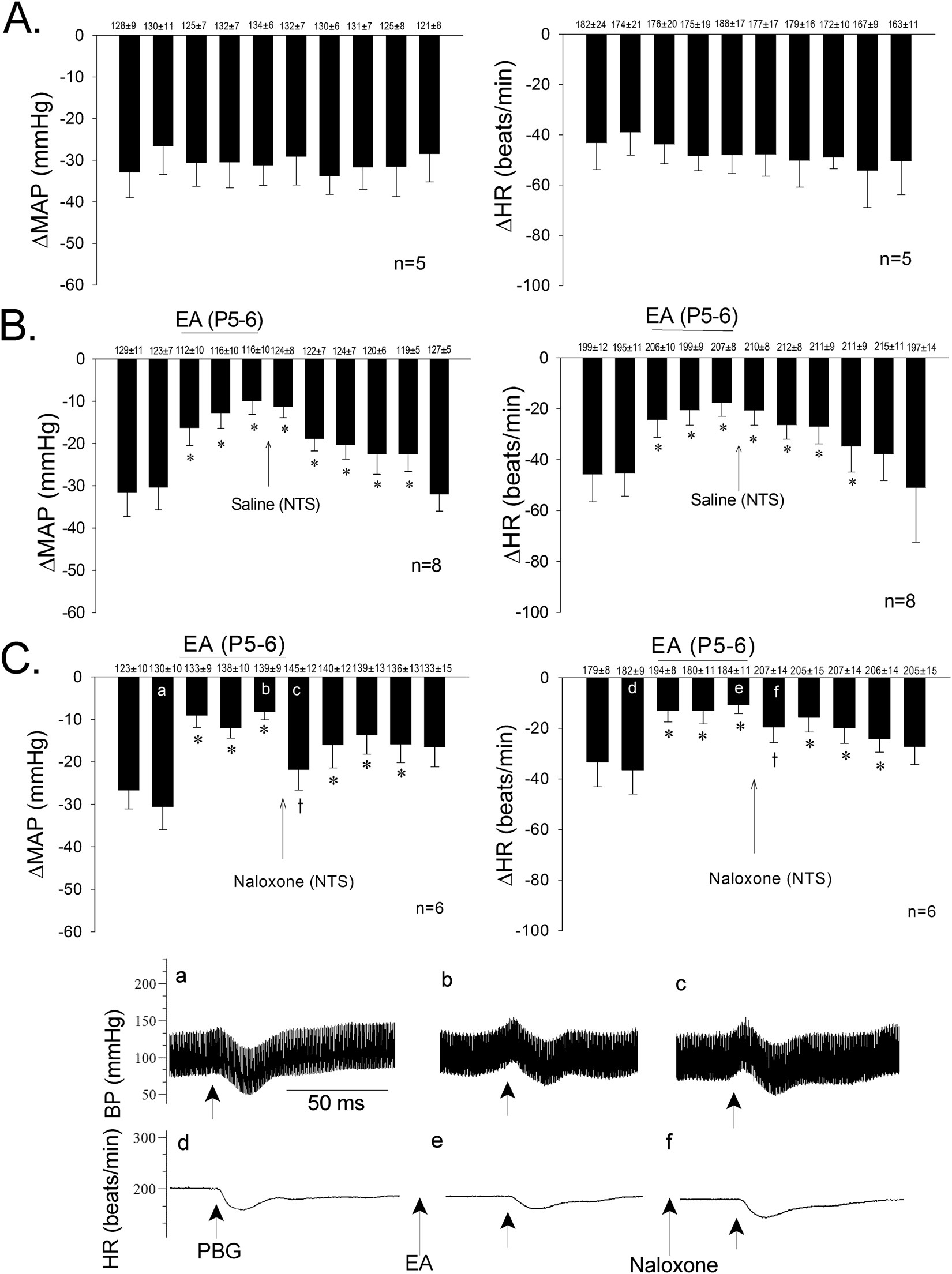 Modulation Of Neurally Mediated Vasodepression And Bradycardia By Electroacupuncture Through Opioids In Nucleus Tractus Solitarius Scientific Reports