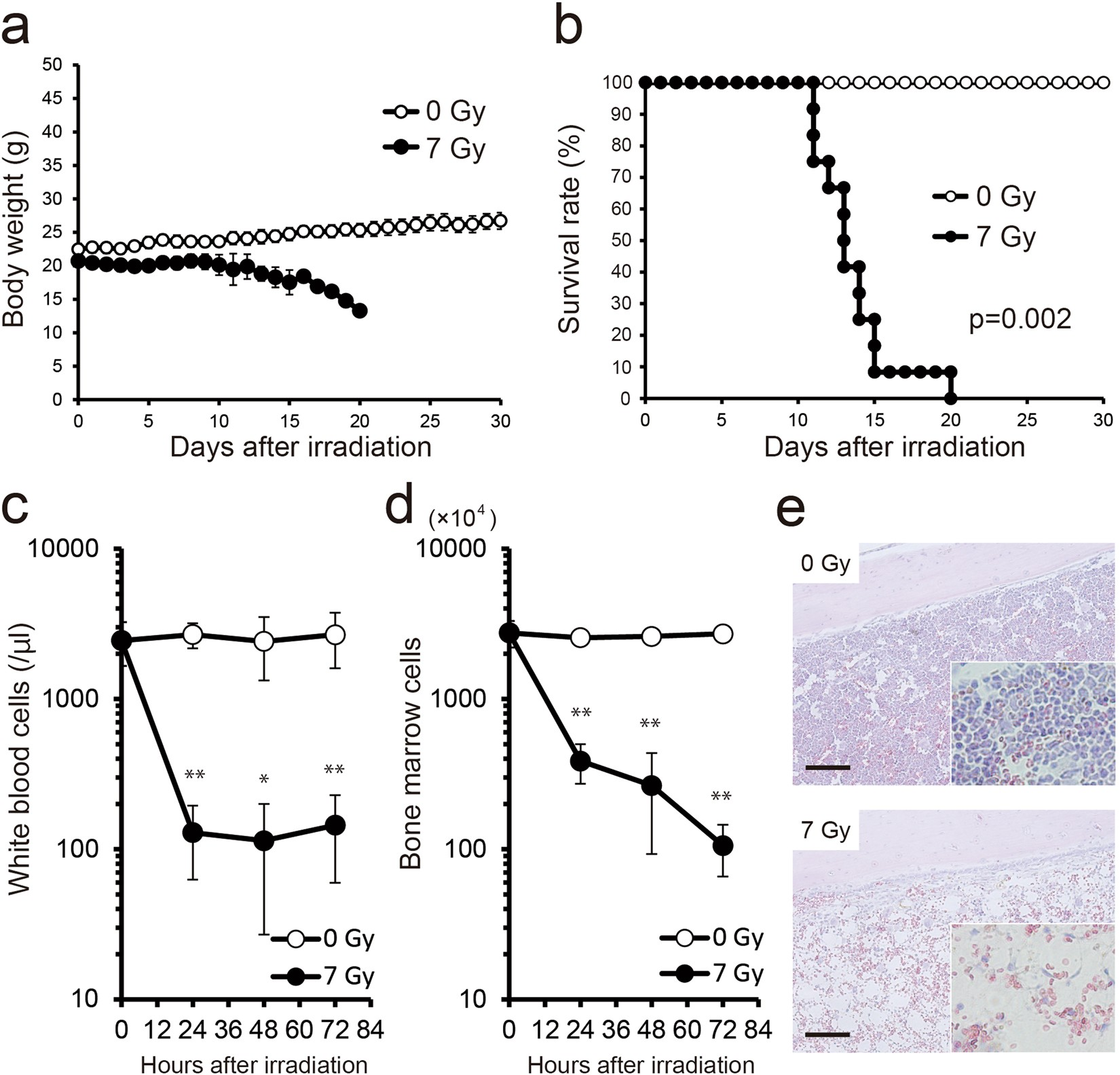 Serum miR-375-3p increase in mice exposed to a high dose of ionizing