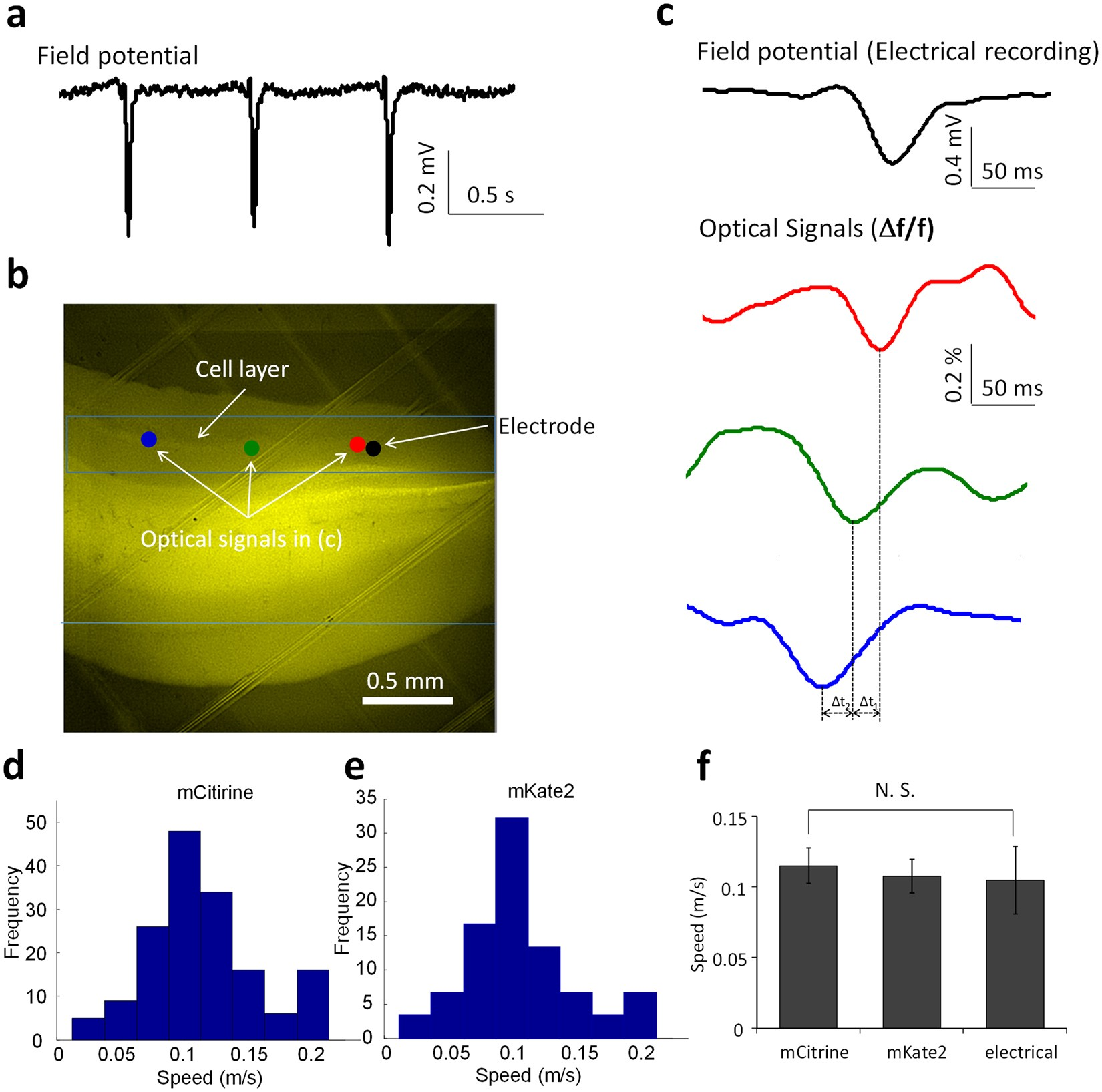Slow Moving Neural Source In The Epileptic Hippocampus Can Mimic Led Characteristics Public Circuit Online Simulator Progression Of Human Seizures Scientific Reports