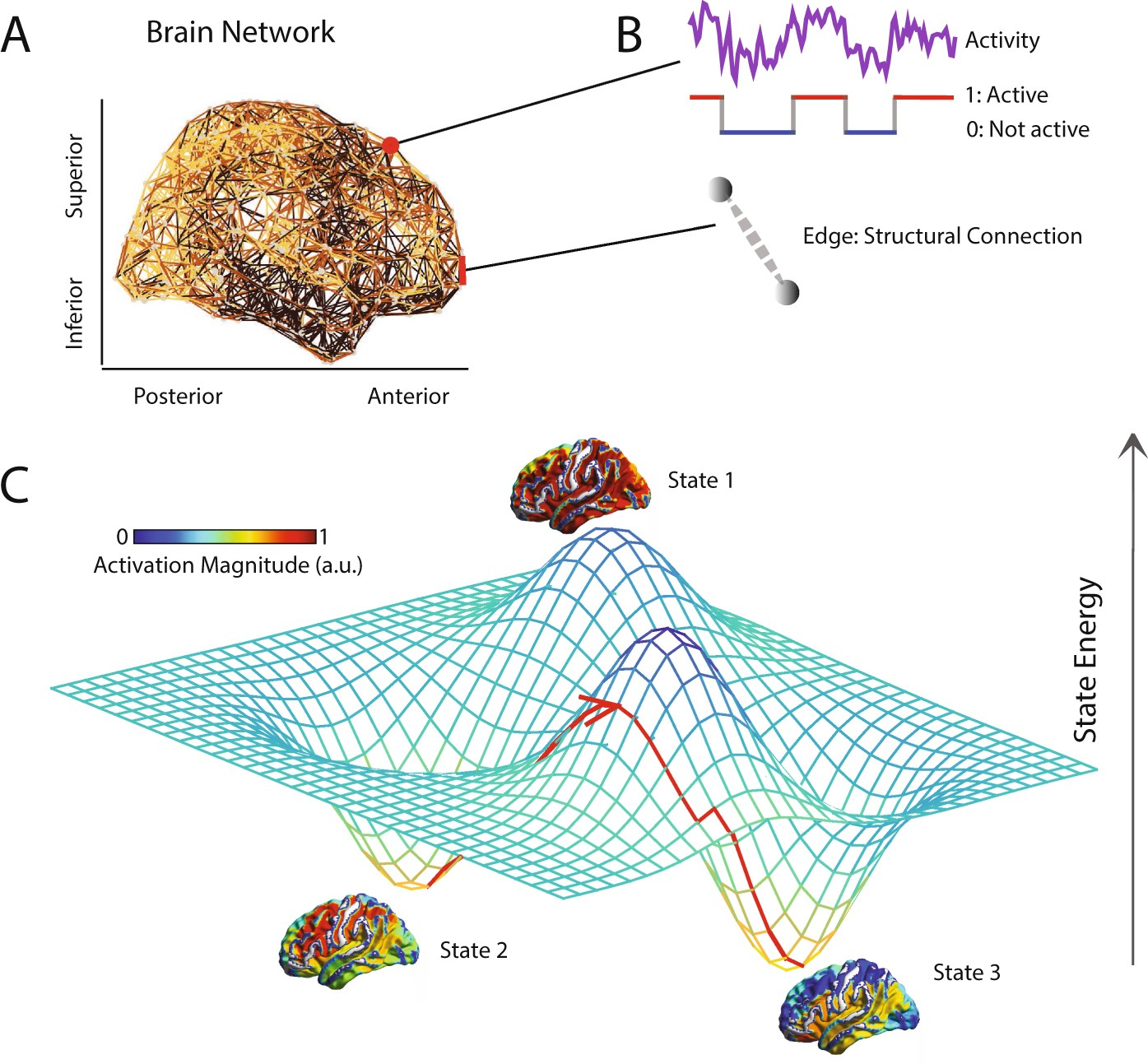 The Energy Landscape Of Neurophysiological Activity Implicit In Simple Bidirectional Dc Motor Speed Controller Electronic Boy For Brain Network Structure Scientific Reports