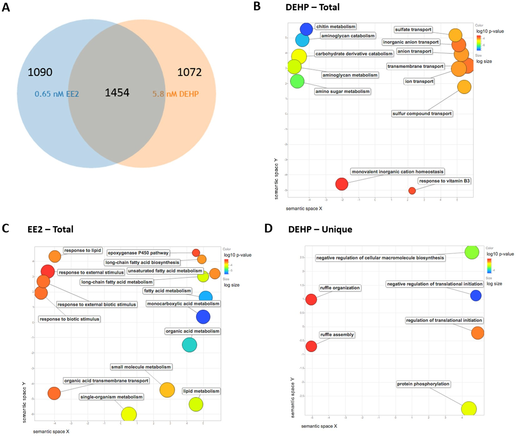 Systems Analysis of the Liver Transcriptome in Adult Male Zebrafish