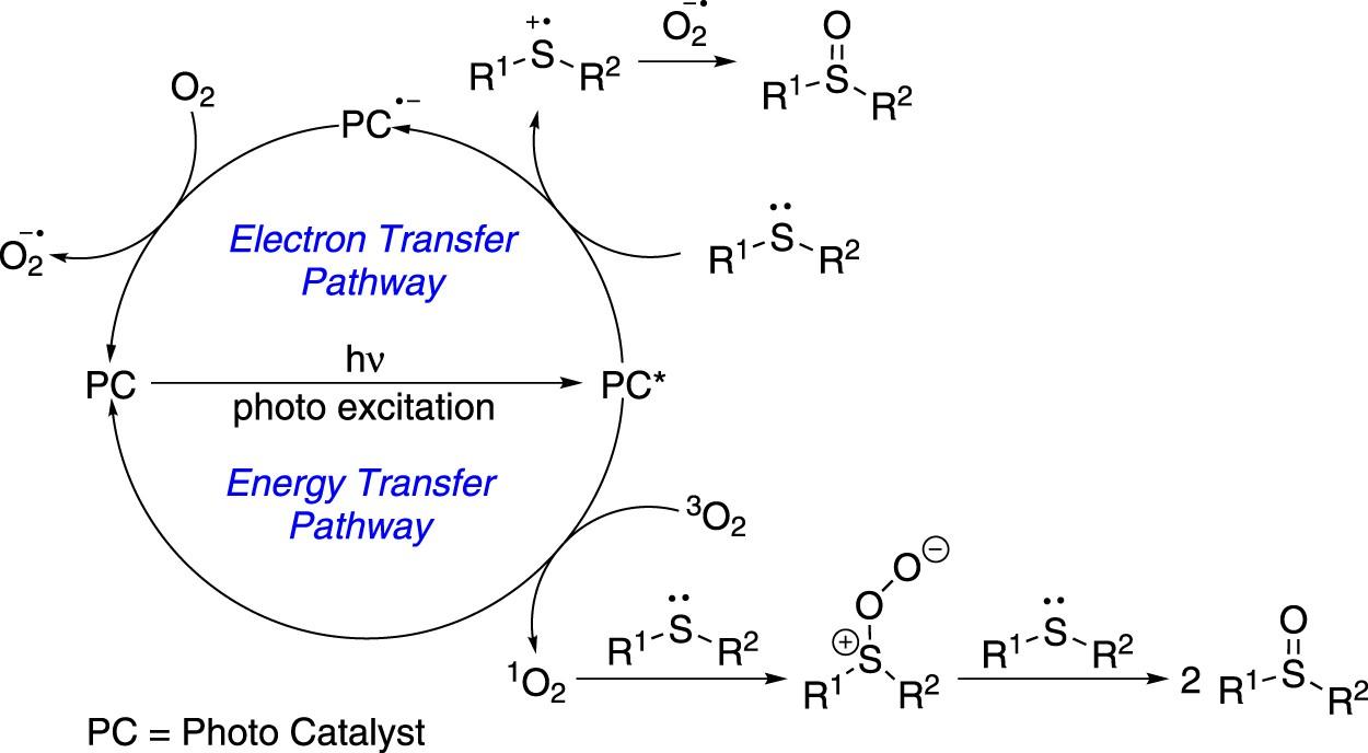 Visible light sensitizer-catalyzed highly selective photo