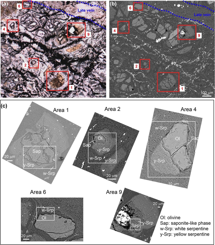 Tracking hidden organic carbon in rocks using chemometrics
