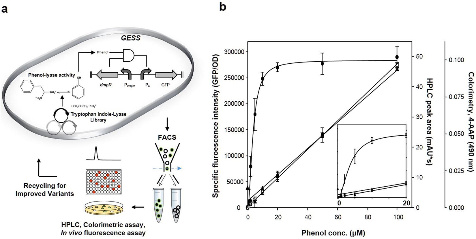 Evolution Of Enzymes With New Specificity By High Throughput Working Portable Circuit Simulation Application Proteus 8 Professional Screening Using Dmpr Based Genetic Circuits And Multiple Flow Cytometry Rounds Scientific