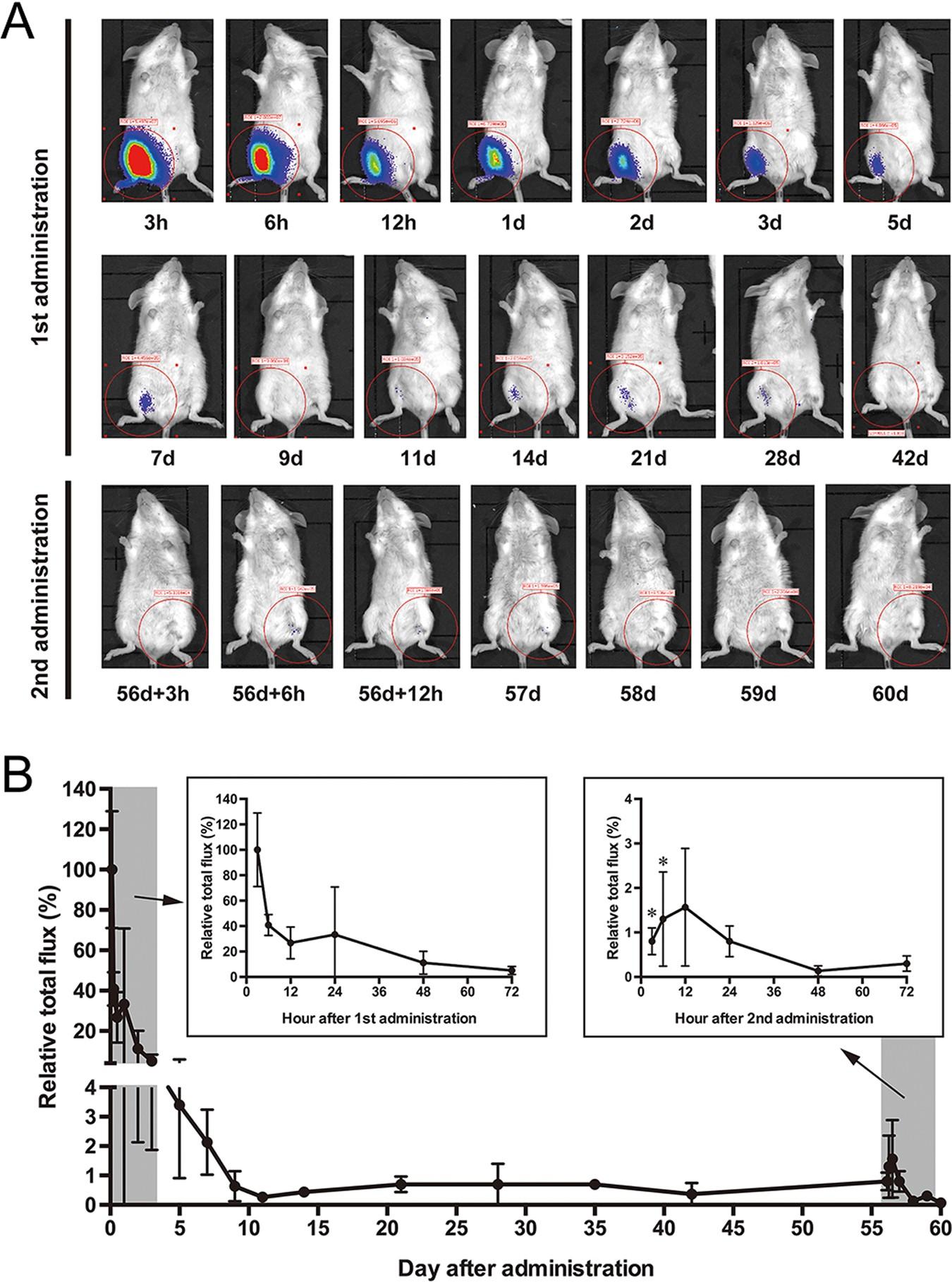 Adenovirus-prime and baculovirus-boost heterologous immunization
