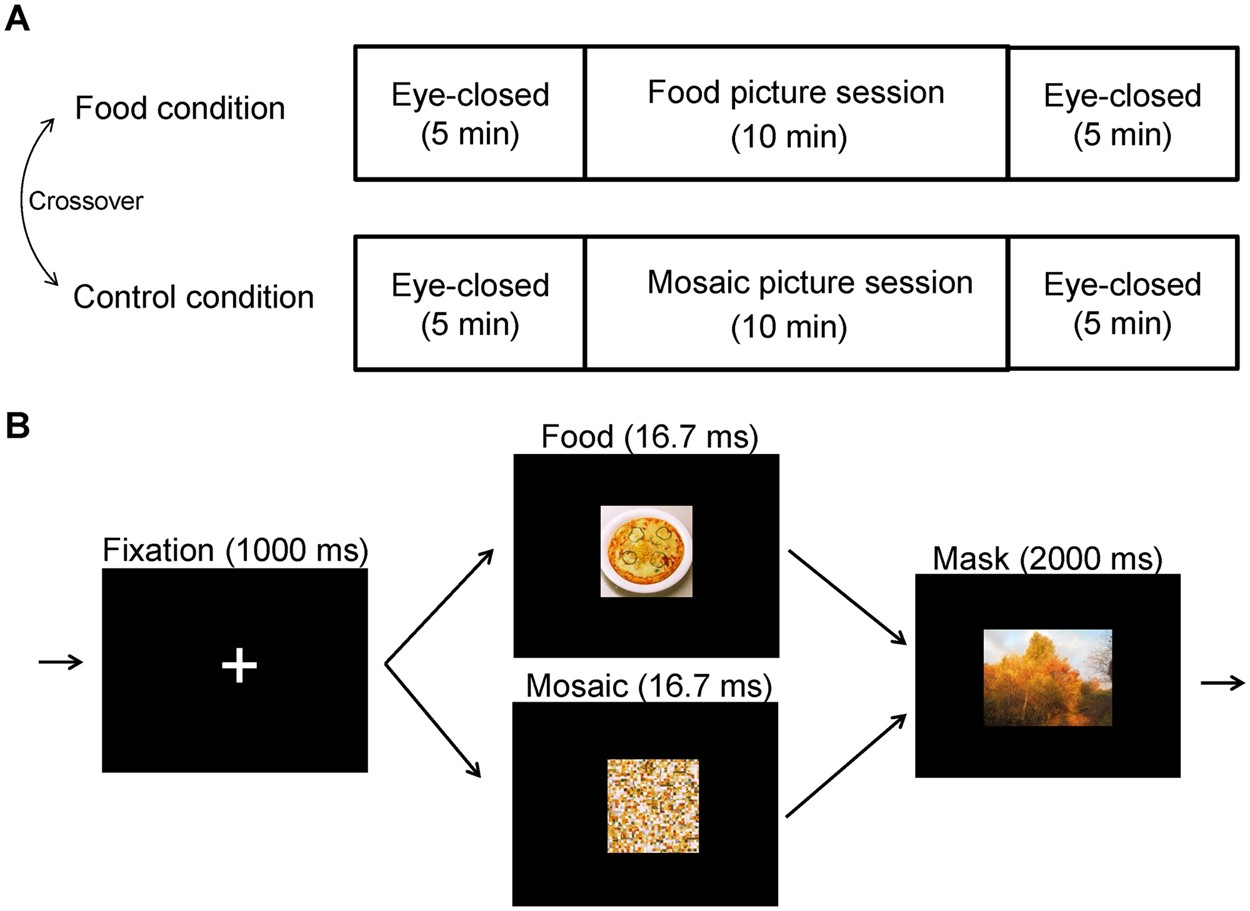 Neural activity induced by visual food stimuli presented out of