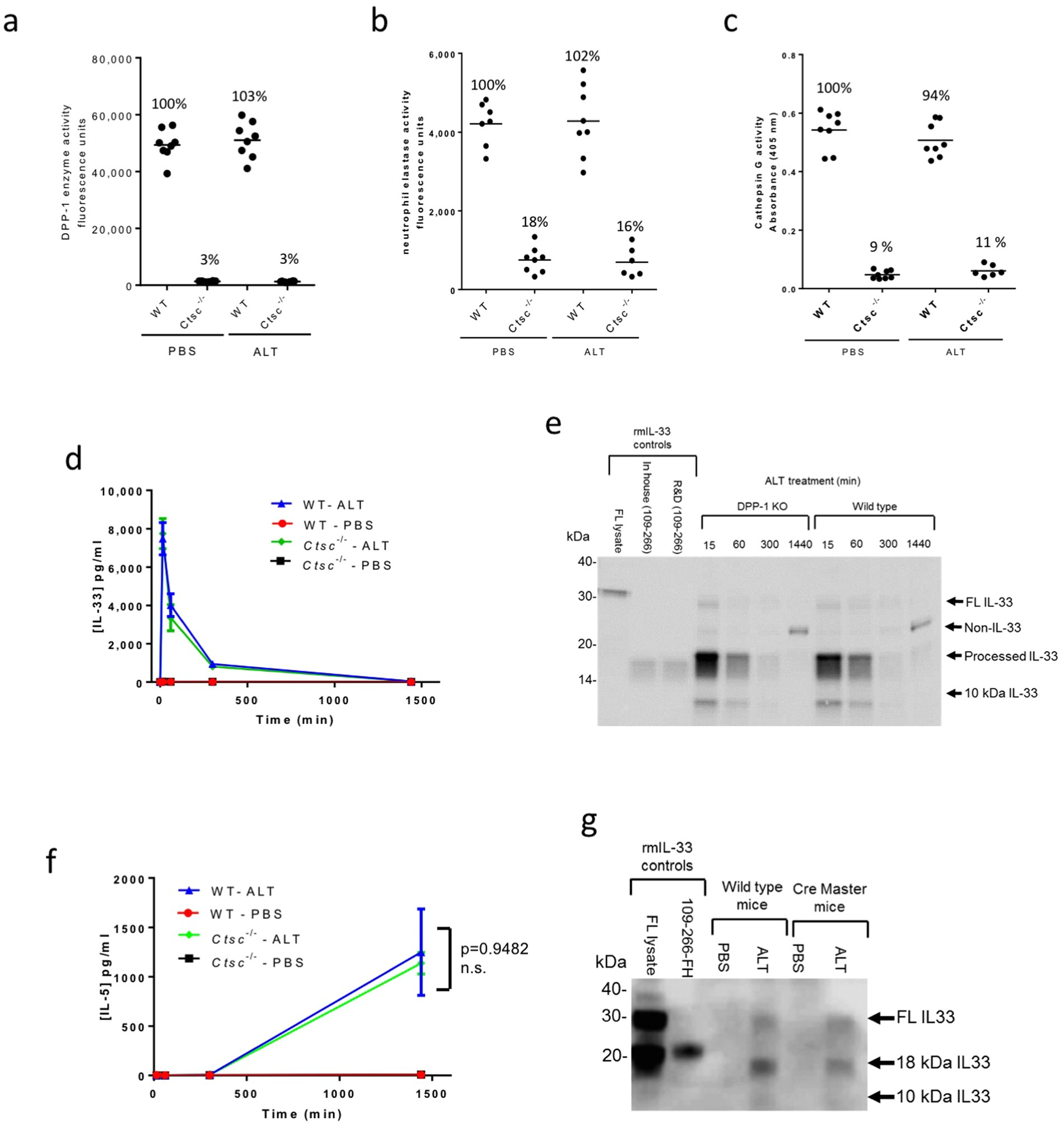 Interleukin-33 is activated by allergen- and necrosis
