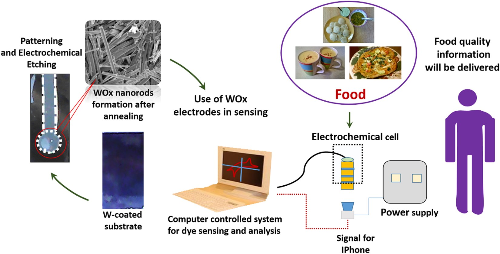 Hybridized Tungsten Oxide Nanostructures For Food Quality Assessment Ccvs Current Controlled Voltage Source In Practice Electrical Fabrication And Performance Evaluation Scientific Reports