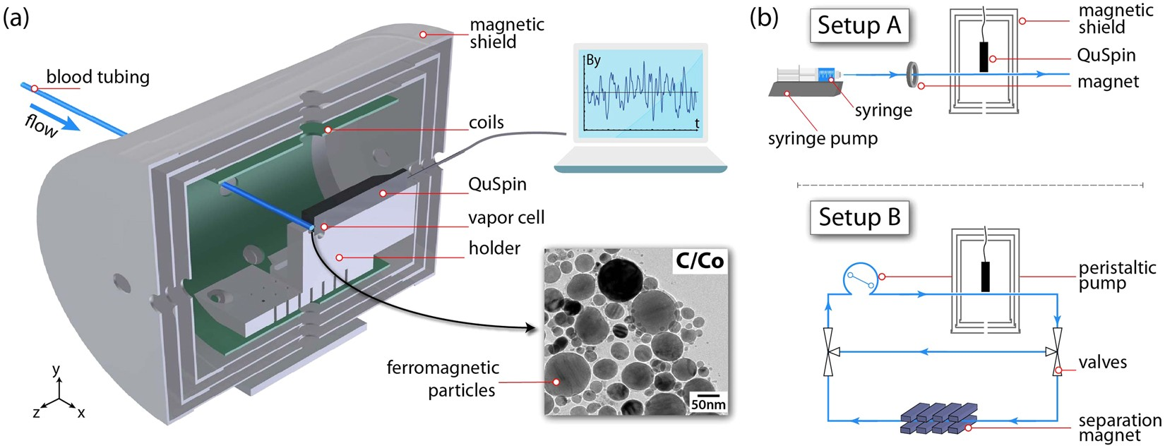 Nondestructive in-line sub-picomolar detection of magnetic
