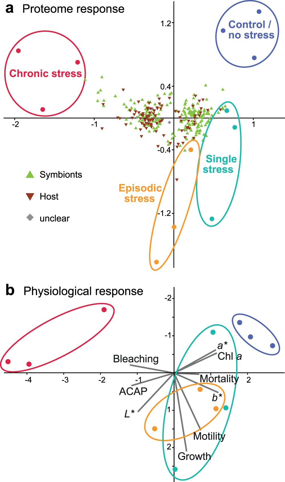 Disentangling thermal stress responses in a reef-calcifier and its ...