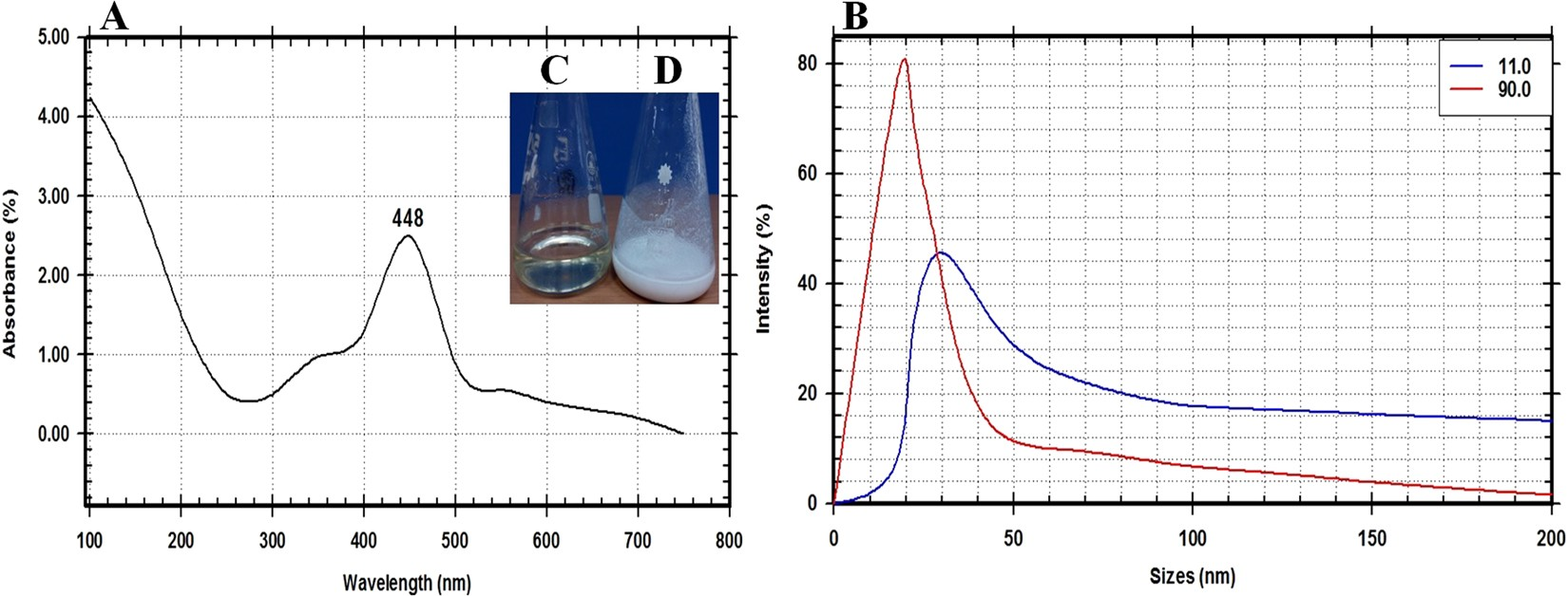 Bioprocessing Strategies For Cost Effective Large Scale Biogenic Wiring Diagram 700 434 Gas Valve Synthesis Of Nano Mgo From Endophytic Streptomyces Coelicolor Strain E72 As An