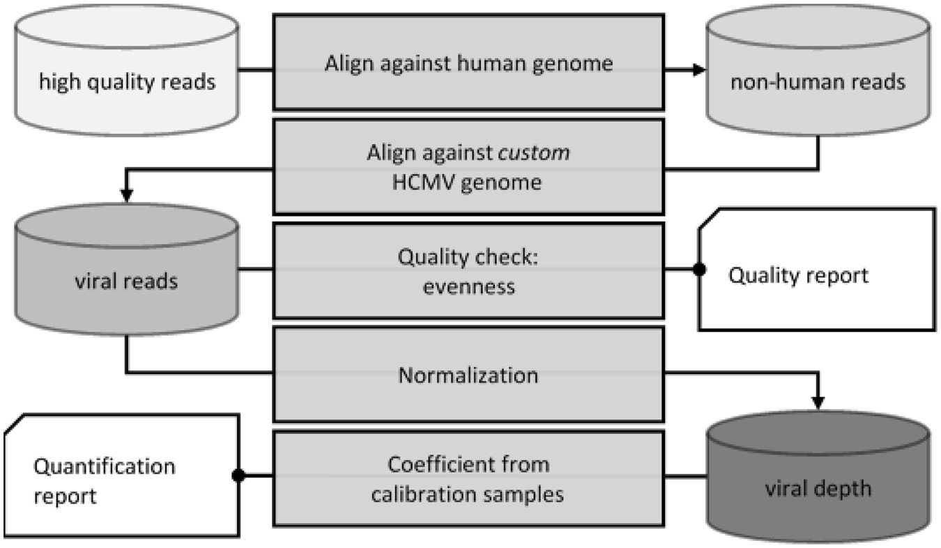 Using Massively Parallel Shotgun Sequencing Of Maternal Plasmatic