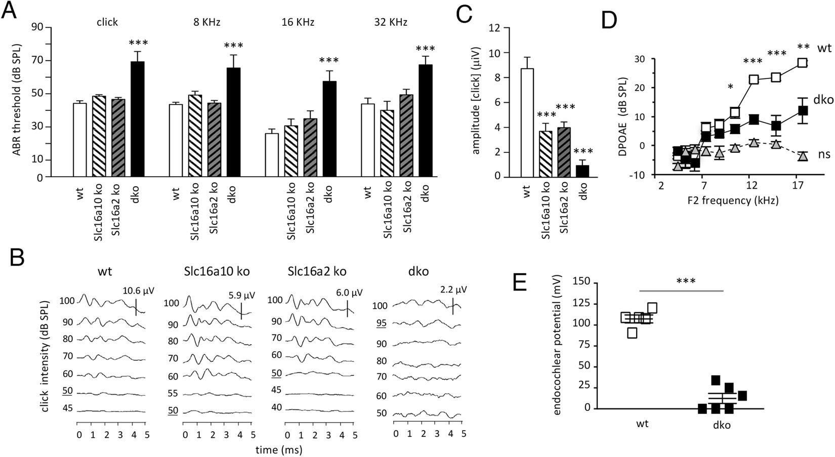 dwarfism effect of hormonal imbalance