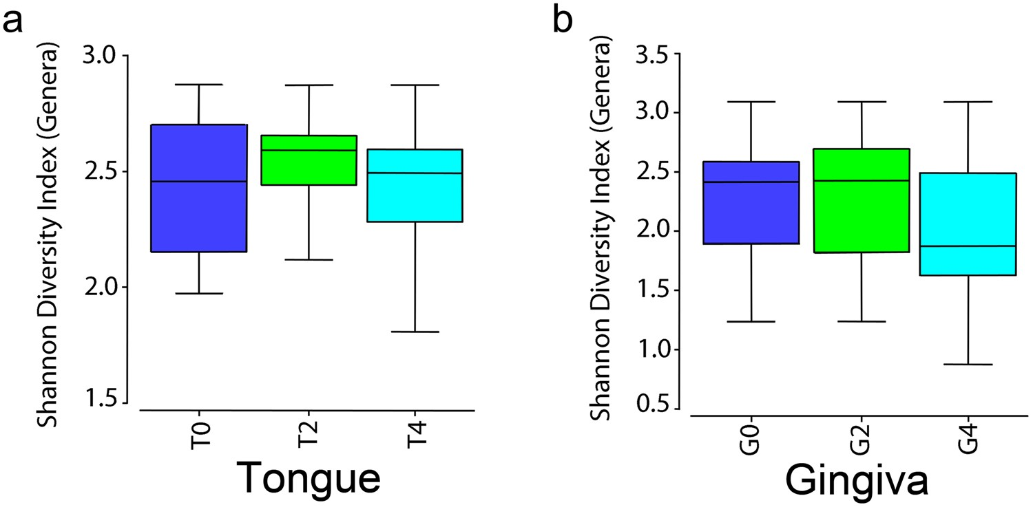 Effects of green tea on miRNA and microbiome of oral