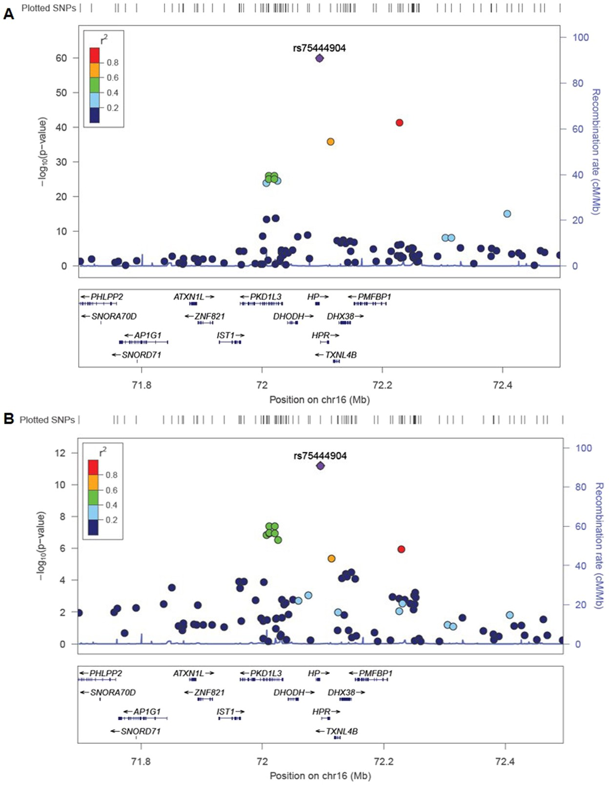 Genetic Markers For Urine Haptoglobin Is Associated With Decline In Mdc300120151 Brushless Speed Controllers 1hp And Over Renal Function Type 2 Diabetes East Asians Scientific Reports