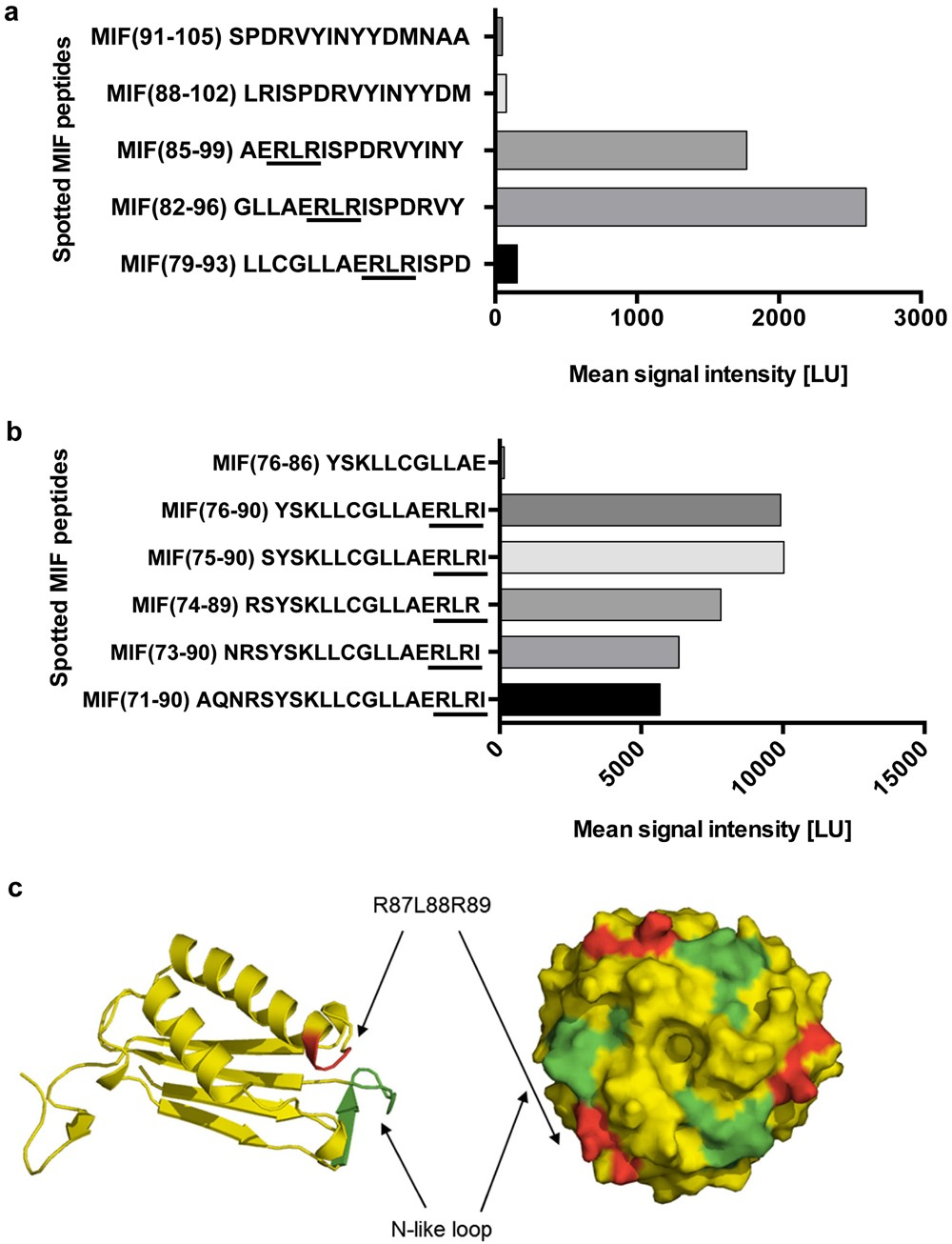 Identification of an Arg-Leu-Arg tripeptide that contributes to the