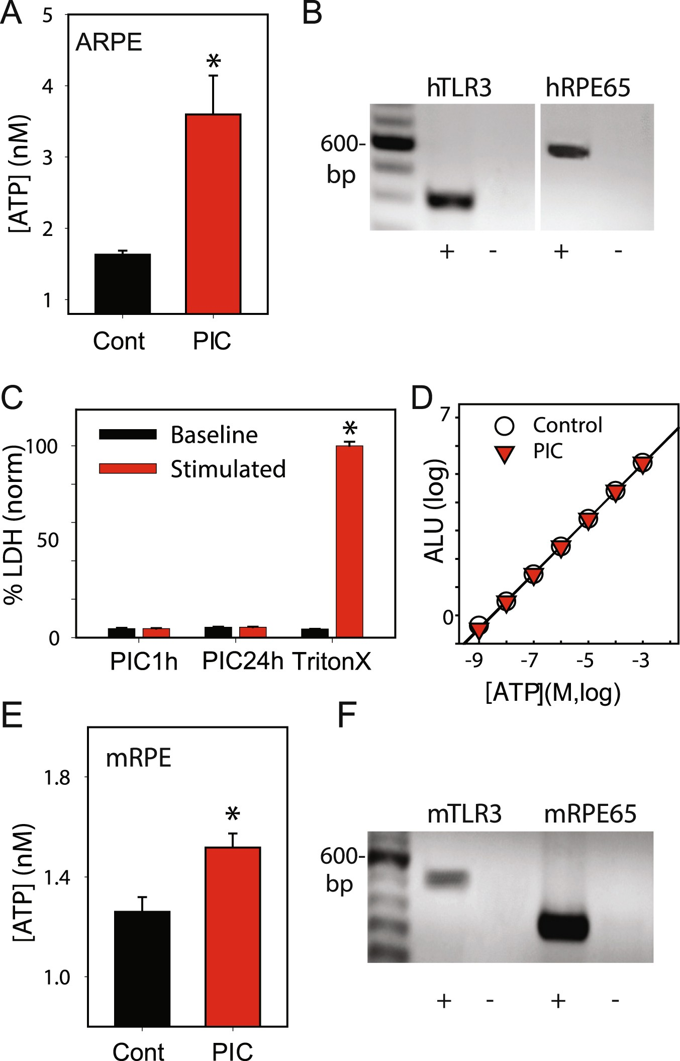 Stimulation of TLR3 triggers release of lysosomal ATP in astrocytes ...